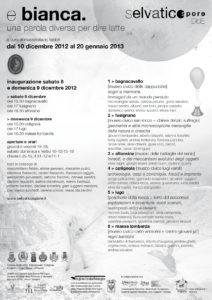 2013locandinaselvaticoebianca