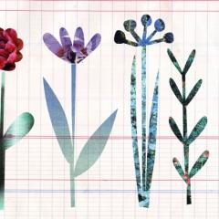instant flower1