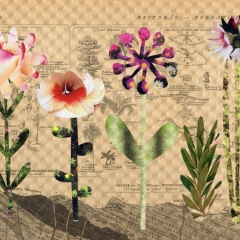 instant flower3